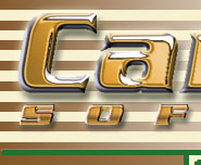 Caracal Software Logo